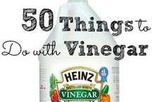 Vinegar facts & Baking Soda / Epsom salt uses... / by Lana Leavy
