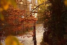autumn love. / by Courtney Little