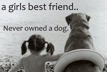 """Pets: """"Our perfect companions never have fewer than four feet."""" ~ Colette / by Christy (O'Neal) Wright"""