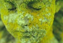 Color Inspirations: Green