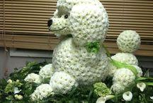Creative flower !