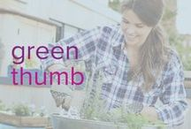 Green Thumb / Because who doesn't love a beatuiful garden