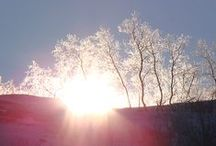 Laponie suedoise / Ce séjour en #Laponie, c'est d'abord un rêve qui se réalise : observer les aurores boréales. C'est aussi découvrir une magnifique région : La Laponie suédoise et plus particulièrement le Parc d'#Abisko, à l'ouest de Kiruna. Un décor du Grand Nord, avec son lot de chaînes de montagnes, de lacs gelés, de canyons, propices aux randonnées en raquettes à neige.