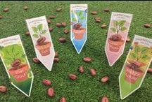 ZauBÄRbohnen :-) / Eine ganz BÄRsondere Geschenkidee, bei der der Beschenkte noch lange an Dich denken wird! Einfach die Bohne einpflanzen und regelmäßig BÄRgießen und schon nach ein paar Tagen wird die Bohne mit der süßen Gravur wieder sichtbar.  Viele Böhnchen für viele Anlässe findest Du hier: https://www.baerenbande-geschenke.de/zauberbohnen/