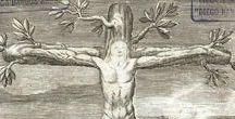 alberi / Vedo ovunque nella natura, ad esempio negli alberi, capacità d'espressione e, per così dire, un'anima. (Vincent van Gogh)