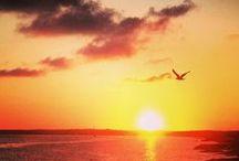 Gone with the sun: SUNSET SHOTS! / Sunsets, postes de sol, Sonnenuntergänge, tramonti, couchers de soleil, ilunabar, 夕焼け, 日落...