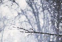 Winterrrrr