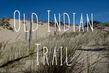 Old Indian Trail / #1 on our map and in the trail guide, Old Indian Trail is 2.5 miles. It is an easy hike and and easy to advanced ski/ Two fairly flat loops begin in a mixed evergreen and hardwood forest and wind through low dunes to the Lake Michigan shore. The trailhead is off of M-22, north of Sutter Rd. Plan ahead. Take water and proper protection for the elements. No pets are allowed on the trail from December 1 through March 31. / by Sleeping Bear Dunes National Lakeshore