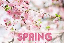 Welcome......SPRING.. / Spring ,,,the best season of the year