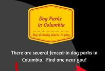 Columbia Dog Parks / Here is a list of local dog parks in the Columbia area.  These parks are fenced-in areas that allow you to let your dog off-leash to socialize with other dogs.  They often have membership fees and regulations to get the gate code.  #dogparkscolumbiasc #dogparks #ColumbiaSC
