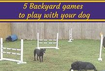 Just for Fun / Fun activities to do with your dog - or pictures we just enjoyed ;-)