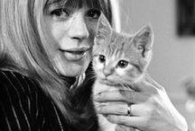 Cats & Cats' Friends