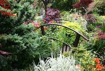 Outdoors: Gardens, Decks, Porches, Home Exteriror & Pools / by Laura McHugh