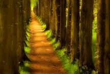 LETS GO FOR A WALK / Stunning footpaths