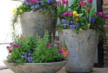 Dicas, ideias e jardinagem  / Faça você mesma