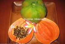 Tropical Fruit and Vegetable