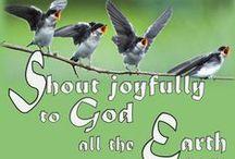 Raamatun lauseita / Ihania lupauksia Jumalan Sanasta. Mukana myös suolaisempia paloja elämän varjelemiseksi.