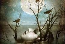 fairy tales & nightmares