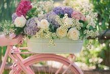 Vejo Flores em você! / Flores lindas e exóticas para pessoas especiais.