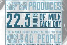 Dairy Love