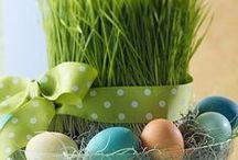Easter / Spring, easter 2017.05.12 2016.03.18 2015.07.28 2015.01.30.