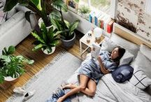 Decor / Design, decor, house, home, cozy