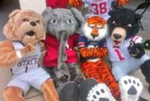 Outrageous College Mascots / College Mascots are Great aren't they? ~ You'll also want to check this out ~ www.RollTideWarEagle.com ~ sports stories that inform and entertain, plus #collegefootball rules tutorial called Train Deck to learn the rules of the game you love.  #Alabamafootball #Auburn #WarEagle  #Alabama #RollTide