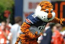 Aubie Never Stops / If you've ever enjoyed game day at Jordan-Hare, you've witnessed the none-stop antics of Aubie, our beloved Mascot.  Aubie is into everything and has every costume.  It's no wonder he won eight National Championship of Mascots. ~ You'll also want to check out ~ www.RollTideWarEagle.com ~ great sports stories, audio podcast and FREE on line tutorial to learn the rules of the game you love. #CollegeFootball #Auburn #Auburnfootball #Aubie