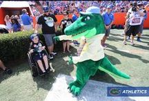 Florida Gators / Everything Florida Gators Fans love about the winning football program and traditions of the Gator Nation. #floridagators #sec  ~ You'll also want to check out ~ www.RollTideWarEagle.com ~ great sports stories, audio podcast and FREE on line tutorial to learn the rules of the game you love. #CollegeFootball #Gators #Floridafootball