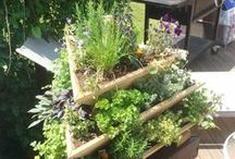Space Savers / Ideas for small and vertical gardening