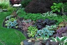 Landscaping, Gardening & Outdoors / Gardening ideas and yard maintenance and upkeep inspiration.  Landscaping ideas and inspiration for all your spring and summer planting needs.  Build raised garden beds, plant vegetables and get some great yard design inspiration.
