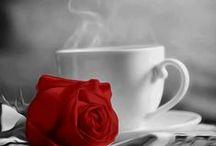 COFFEE -TEA