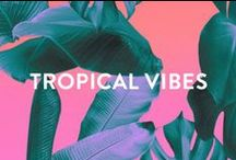 TROPICAL VIBES / We live in an island, and we love the tropics. Let yourself dream away with these sunny pins of tropical vibes!