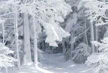 jz: winter