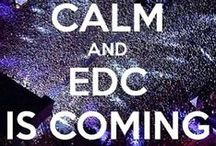 EDC - Electric Daisy Carnival / Photos from EDC. Pictures from Electric Daisy Carnival around the world.  / by Extreme 80's