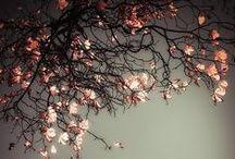Shades of pink & grey