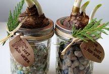 MASON JARS / How to use Mason jars
