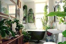 Bathrooms / by Megan Marr
