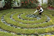 In The Garden / by Rachael Caringella- Artist, Mystic, Oracle