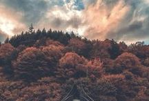Autumn / Everything autumn: atmosphere photos, decorating, crafts
