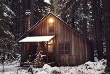 Cabin Living / by Rachael Caringella- Artist, Mystic, Oracle