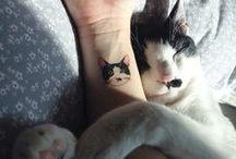 Tatouages : les animaux dans la peau - Tattoos for animals lovers / Peu à peu, au fur et à mesure du temps qui passe, le tatouage est un art qui se démocratise. Aussi, il n'est plus rare que les amoureux des animaux se les encrent sur la peau.