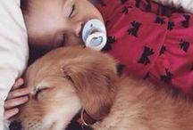 Les plus belles photos de chiens avec leurs humains / Toute les photos les plus mignonnes sur l'amitié homme / chien