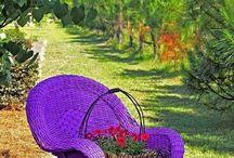 Purple Pinteresting Things!