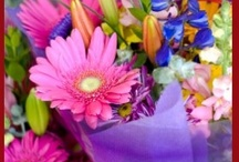 Starting at $19.99 / You don't need to strain your budget to enjoy beautiful flowers!