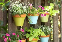 Garden Ideas / Give your green thumb some inspiration! Container gardens, vegetable gardens, and urban oasis ideas will make you want to get outside and start planting.