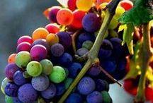 Gorgeous Grapes