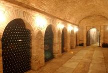 Sensational Cellars / Ideas and inspiration for storing #wine.
