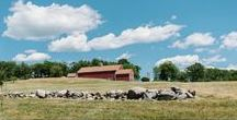 """Fruitlands Museum / The Fruitlands Museum is a historic Massachusetts wedding venue in Harvard, MA, near where Louisa May Alcott set her novel, """"Transcendental Wild Oats."""" Catering by Fireside Catering."""