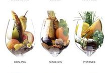 Wine Education / #Wine #tips, #education, #pairings and #infographics